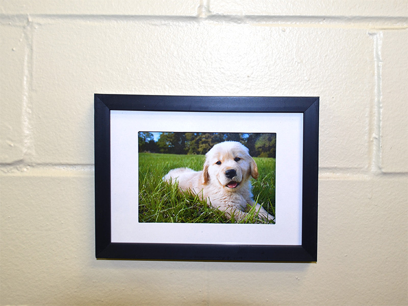 Apply UGlu® to your picture frames and apply to your walls! It sticks to cinder block walls, regular painted walls, brick walls, you name it and UGlu® sticks to it!